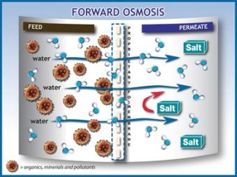graph_forward-osmosis